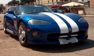Viper blue stripes RT10